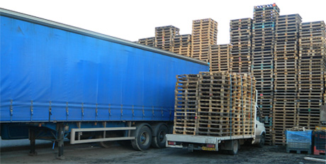 Contact Direct Pallet